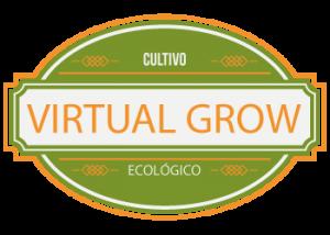 virtual21